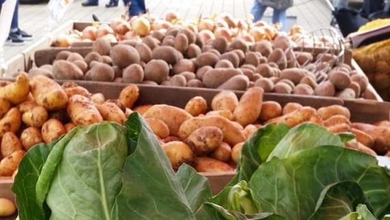 Solidarische Landwirtschaft – Solidarische Gesellschaft