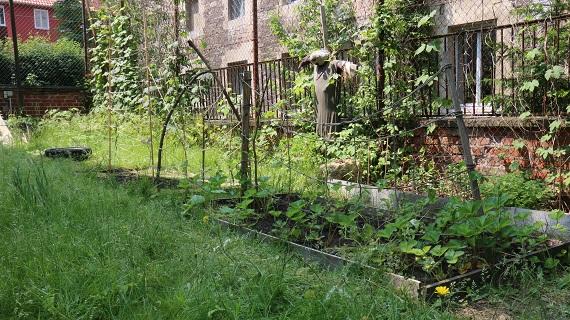 Naturgartenprojekt im Jugendzentrum Mühle